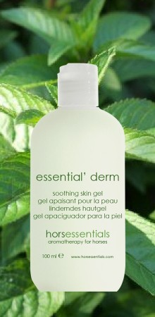 http://www.horsessentials.com/199-thickbox_default/essential-derm-skin-gel.jpg