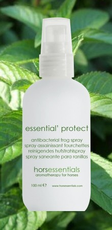 http://www.horsessentials.com/200-thickbox_default/essential-protect-hoof-spray.jpg