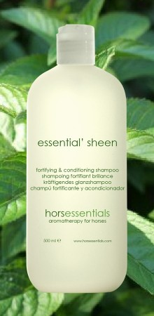 http://www.horsessentials.com/202-thickbox_default/essential-sheen-conditioning-shampoo.jpg