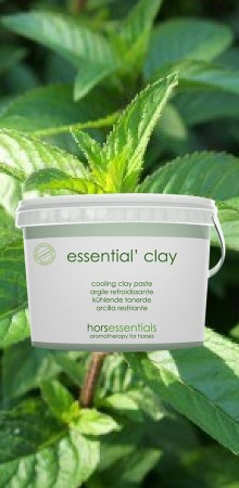 http://www.horsessentials.com/207-thickbox_default/essential-clay-cooling-poultice.jpg