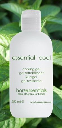 http://www.horsessentials.com/212-thickbox_default/essential-cool-gel.jpg